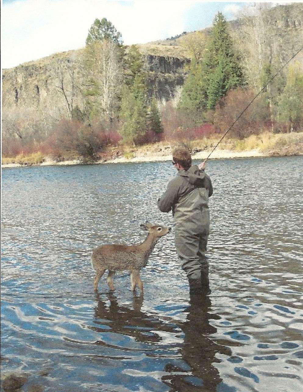 deerfishing - Copy